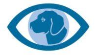 logo CICAM